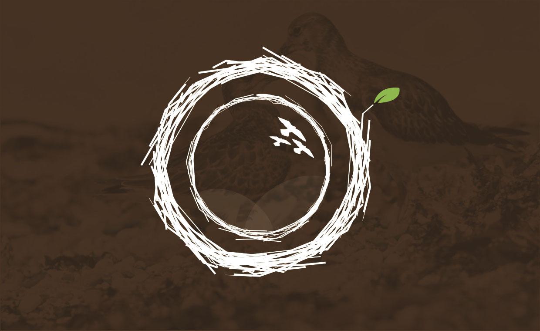 The Wildlife Photography Company Logo Design Brand Identity