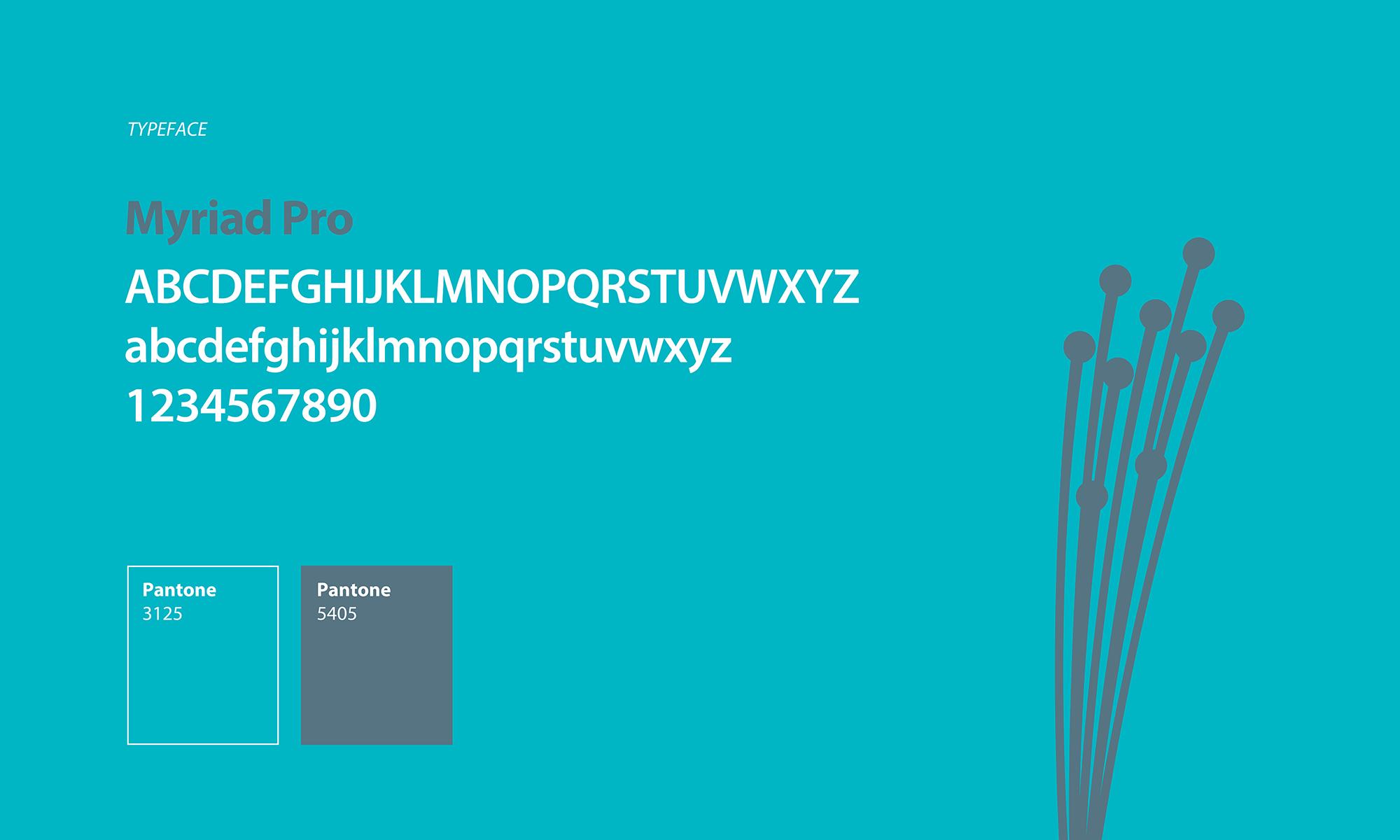 interface-typefacestyle